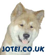 UK akita resource, information, akita rescue, galleries and pet forum. Incorporating general akita & pets welfare